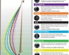 Taylor Bias Chart